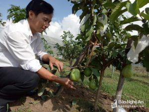 Lợi ích mang lại của nông nghiệp tiên tiến